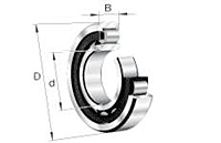 Cylindrical Roller Bearing 200 Series